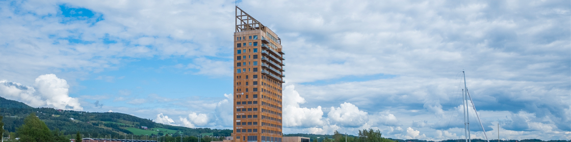 Banner photo_tall wooden building skyline 1120x280